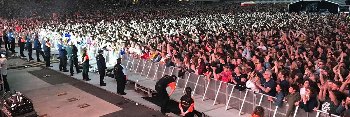 The SES Group crowd management security services